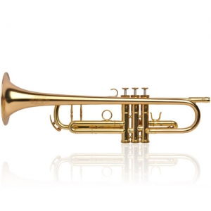 Buy Trumpet Bb Adams A3