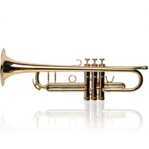 Buy Trumpet Bb Adams A7