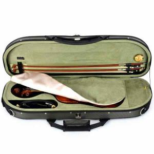 "Case for Violin 4/4 Artonus Model ""Revana"""