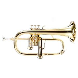 Bb Flugelhorn with 3 piston valves B&S Challenger 3145G-L (gold brass Bell)