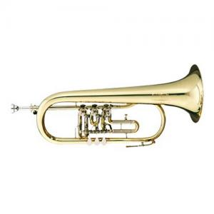 Bb Flugelhorn with 3 rotary valves B&S 17/2TR-L