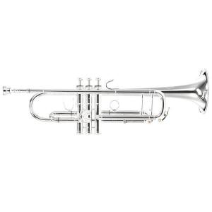 Bb Trumpet B&S Challenger 3125/2-S (one piece bell, large bore, silver plated)