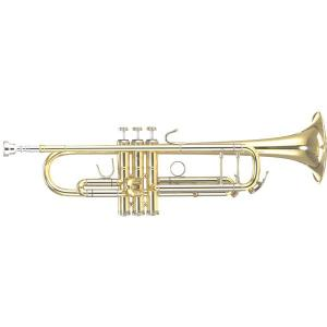 Bb Trumpet B&S Challenger 3137/2ST-L (Sterling Silver Bell and Leadpipe)