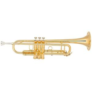 Bb Trumpet Miraphone M3000 PR1 Gold Brass gold plated