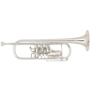 Bb Trumpet Miraphone 11 Gold Brass Silver plated