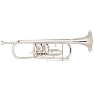 Bb Trumpet Miraphone 9R 1102A Gold Brass Silver plated