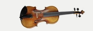 String Instruments - Violins, Violas, Cellos and Double Basses