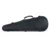 Case for violin Green Line 4/4, 3/4 Jakob Winter JW 52017